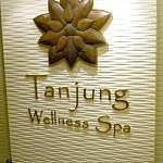 Tanjung Wellness Spa at Philea Resort & Spa