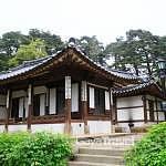 Korea - Part 1 - South Korea - Seoul - Nami Island - Gyeonggi - Paju