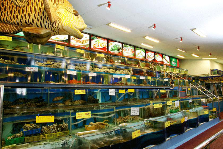 Unique Seafood Petaling Jaya - Aquarium
