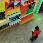 Information on Malaysian fauna and their habitats
