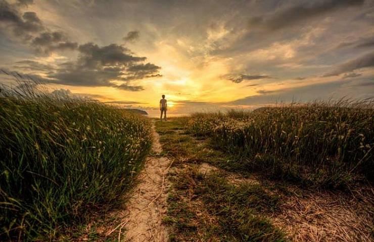 Amateur Category - Paddy field in Ulu Melaka by Taufeeq Halim