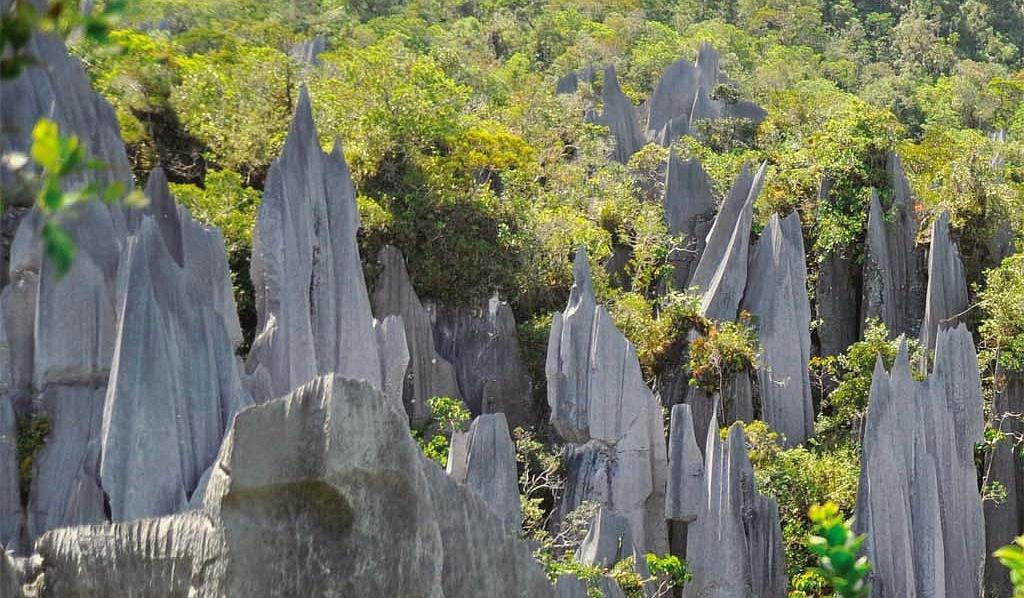 The Hidden Jewel Of Mulu UNESCO World Heritage Site