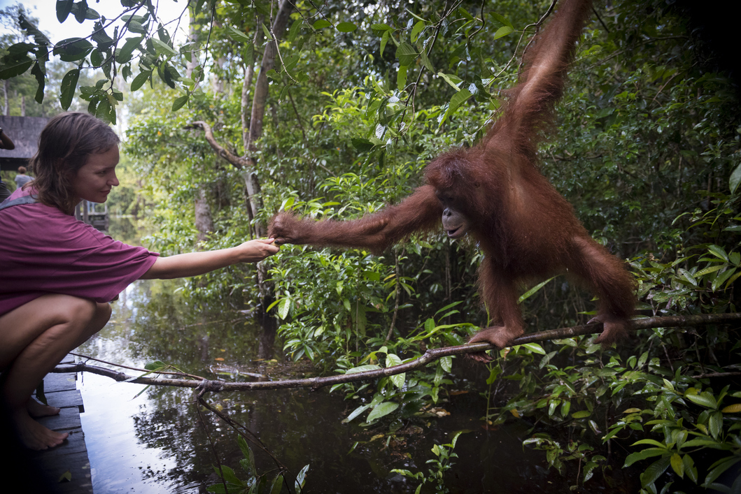Exploring Kuching with Hilton: A Once-In-A-Lifetime Experience with Nature