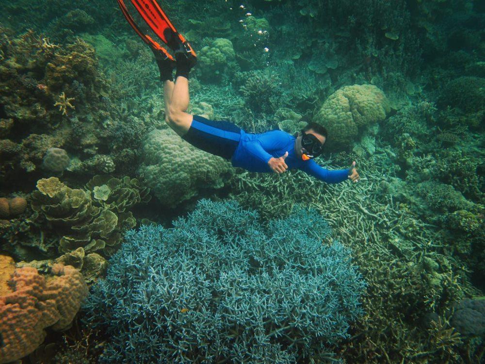 Snorkelling (Credit to Dinas Pariwisata dan Kebudayaan Kabupaten Kepulauan Anambas)
