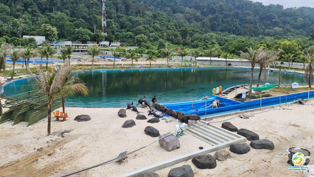 Snorkelling Pool at the Perdana Quay Eco Marine Park
